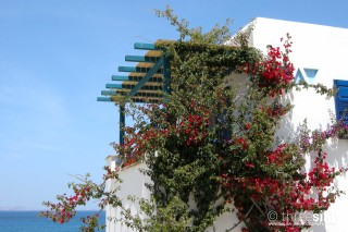 orkos sea view apartments in naxos